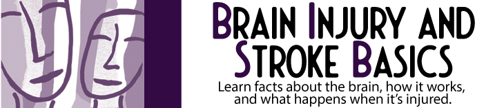 Brain Injury Basics