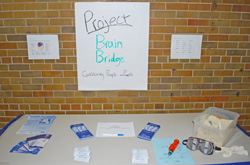 Project Brain Bridge